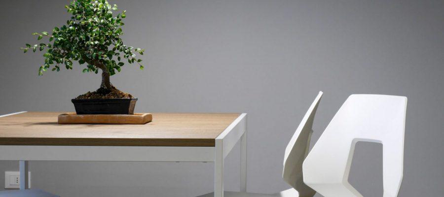 Cotto D'Este Fliesen des Herstellers Panariagroup Ceramics Spa.